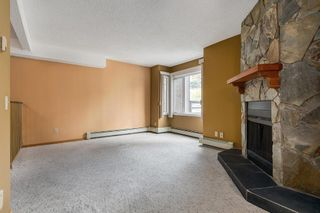 Photo 6: 204 333 2 Avenue NE in Calgary: Crescent Heights Apartment for sale : MLS®# A1039174