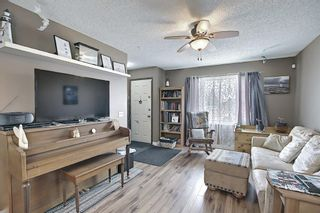 Photo 7: 367 Maitland Crescent NE in Calgary: Marlborough Park Detached for sale : MLS®# A1093291