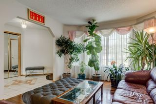 Photo 6: 140 Eldorado Close NE in Calgary: Monterey Park Detached for sale : MLS®# A1113532