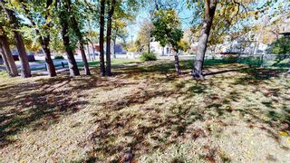 Photo 19: 383 Pacific Avenue in Winnipeg: House for sale : MLS®# 202121244