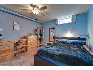 Photo 33: 131 LAKE CRIMSON Close SE in Calgary: Lake Bonavista House for sale : MLS®# C4064324
