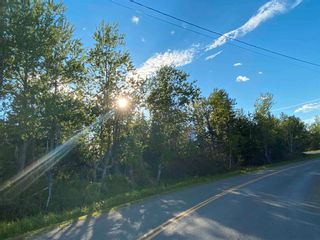 Photo 13: 16 acres Caribou Island Road in Caribou Island: 108-Rural Pictou County Vacant Land for sale (Northern Region)  : MLS®# 202104068