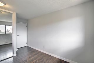 Photo 28: 4302 13045 6 Street SW in Calgary: Canyon Meadows Apartment for sale : MLS®# A1116316