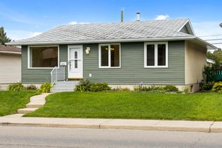 Photo 30: 3320 Dover Ridge Drive SE in Calgary: Dover Detached for sale : MLS®# A1141061