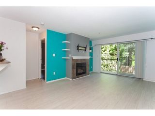 Photo 3: 104 20881 56 AVENUE in Langley: Langley City Condo for sale : MLS®# R2564873