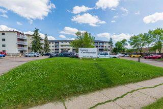 Main Photo: 315 1945 105 Street in Edmonton: Zone 16 Condo for sale : MLS®# E4209462