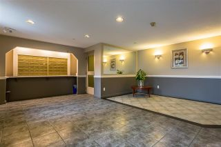 "Photo 39: 215 20894 57 Avenue in Langley: Langley City Condo for sale in ""BAYBERRY LANE"" : MLS®# R2254851"
