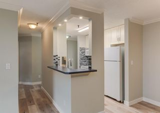 Photo 6: 110 727 56 Avenue SW in Calgary: Windsor Park Apartment for sale : MLS®# A1133912