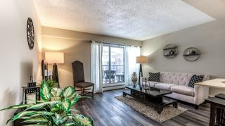 Photo 5: 301 1717 12 Street SW in Calgary: Lower Mount Royal Apartment for sale : MLS®# A1068665