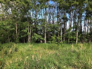 Photo 2: 24190 Meadow Drive in Rural Rocky View County: Rural Rocky View MD Residential Land for sale : MLS®# A1098168