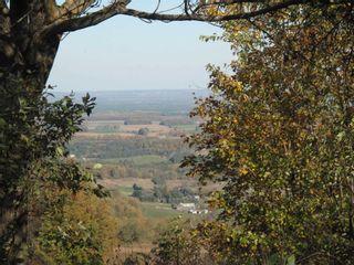 Photo 35: 798475 3rd Line in Mulmur: Rural Mulmur House (Bungalow) for sale : MLS®# X4806669