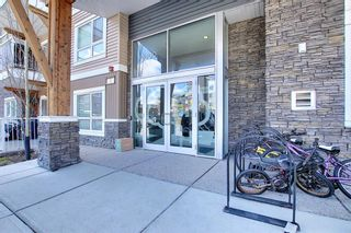 Photo 34: 1411 302 Skyview Ranch Drive NE in Calgary: Skyview Ranch Apartment for sale : MLS®# A1102866