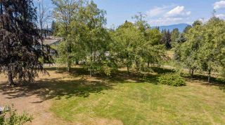 Photo 6: 1213 COTTONWOOD Avenue in Coquitlam: Central Coquitlam House for sale : MLS®# R2292834