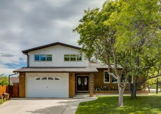 Main Photo: 499 Berkley Crescent NW in Calgary: Beddington Heights Detached for sale : MLS®# A1130480