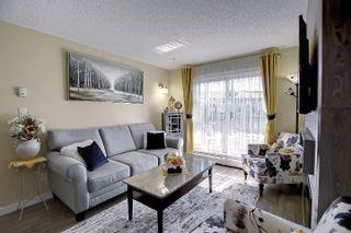 Photo 12: 312 5510 SCHONSEE Drive in Edmonton: Zone 28 Condo for sale : MLS®# E4265102