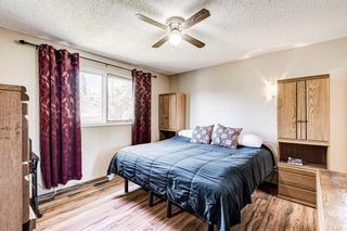 Photo 19: 459 Queen Charlotte Road SE in Calgary: Queensland Detached for sale : MLS®# A1122590