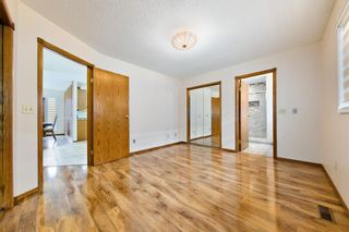Photo 23: 45 Martinview Crescent NE in Calgary: Martindale Detached for sale : MLS®# A1112618
