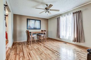 Photo 5: 126 Dovercliffe Way SE in Calgary: Dover Detached for sale : MLS®# A1082276