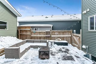 Photo 30: 178 Auburn Crest Way SE in Calgary: Auburn Bay Detached for sale : MLS®# A1071986