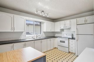 Photo 10: 2419 6 Street NW in Calgary: Mount Pleasant Semi Detached for sale : MLS®# A1101529