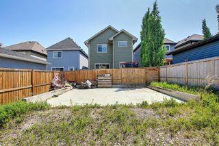 Photo 43: 150 MAHOGANY Heights SE in Calgary: Mahogany Detached for sale : MLS®# A1120366