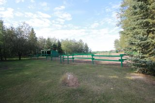 Photo 32: 56318 RGE RD 230: Rural Sturgeon County House for sale : MLS®# E4260922