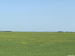 Photo 7: McNally Acreage in Sherwood: Lot/Land for sale (Sherwood Rm No. 159)  : MLS®# SK826998
