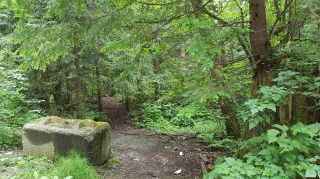 Photo 6: 14.65AC BARRETT STREET in Mission: Mission BC Land for sale : MLS®# R2079511