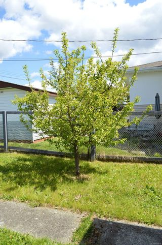 Photo 13: 3775 Maitland St in : PA Port Alberni House for sale (Port Alberni)  : MLS®# 874930