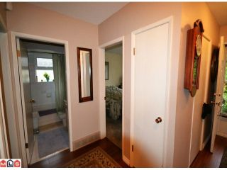 Photo 6: 31792 OLD YALE RD in ABBOTSFORD: House for rent (Abbotsford)