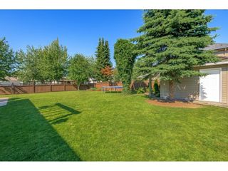 """Photo 39: 4492 217B Street in Langley: Murrayville House for sale in """"Murrayville"""" : MLS®# R2596202"""