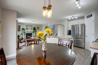Photo 11: 50 Martha's Place NE in Calgary: Martindale Detached for sale : MLS®# A1119083