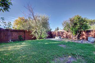 Photo 32:  in Edmonton: Zone 29 House for sale : MLS®# E4262869