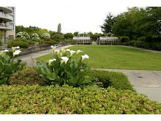 """Photo 18: 1008 4425 HALIFAX Street in Burnaby: Brentwood Park Condo for sale in """"POLARIS"""" (Burnaby North)  : MLS®# V1070564"""
