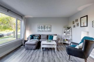 Photo 9: 6310 37 Street SW in Calgary: Lakeview Semi Detached for sale : MLS®# A1147557