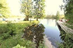 Photo 5: 23 Trent View Road in Kawartha Lakes: Rural Eldon House (Bungalow-Raised) for sale : MLS®# X4456254