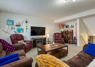 Photo 22: 14 Royal Birch Grove NW in Calgary: Royal Oak Detached for sale : MLS®# A1073749