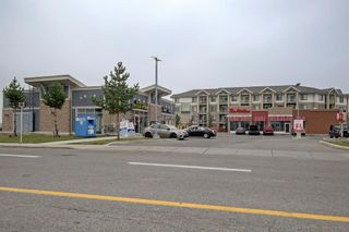 Photo 22: 144 1717 60 Street SE in Calgary: Red Carpet Apartment for sale : MLS®# A1131300