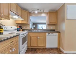 Photo 7: 183 3665 244 Street in Langley: Aldergrove Langley Manufactured Home for sale : MLS®# R2605572
