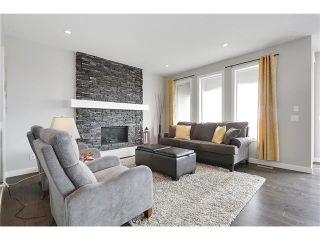 Photo 15: 11 MAHOGANY Park SE in Calgary: Mahogany House for sale : MLS®# C4111674