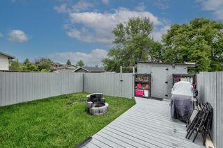 Photo 43: 5 Templeton Bay NE in Calgary: Temple Semi Detached for sale : MLS®# A1113362