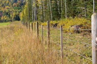 Photo 17: 15058 Kitseguecla Lake Road | Rural Smithers
