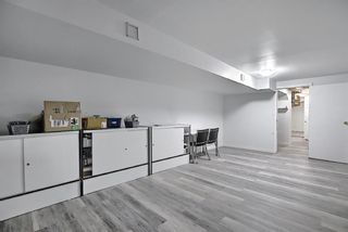 Photo 35: 6636 Temple Drive NE in Calgary: Temple Semi Detached for sale : MLS®# A1085203
