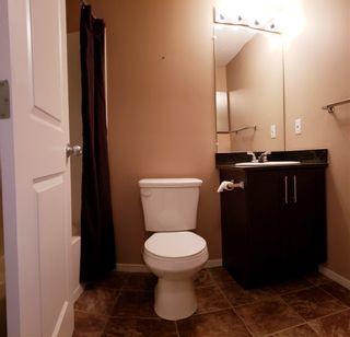 Photo 16: #313, 5804 Mullen Place in Edmonton: Zone 14 Condo for sale : MLS®# E4234473