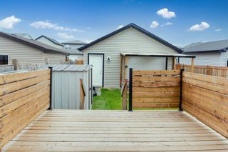 Photo 42: 21721 99A Avenue in Edmonton: Zone 58 House for sale : MLS®# E4255629