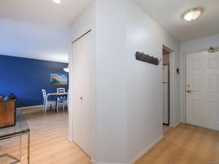 Photo 17: 208 1436 Harrison St in : Vi Downtown Condo for sale (Victoria)  : MLS®# 869087