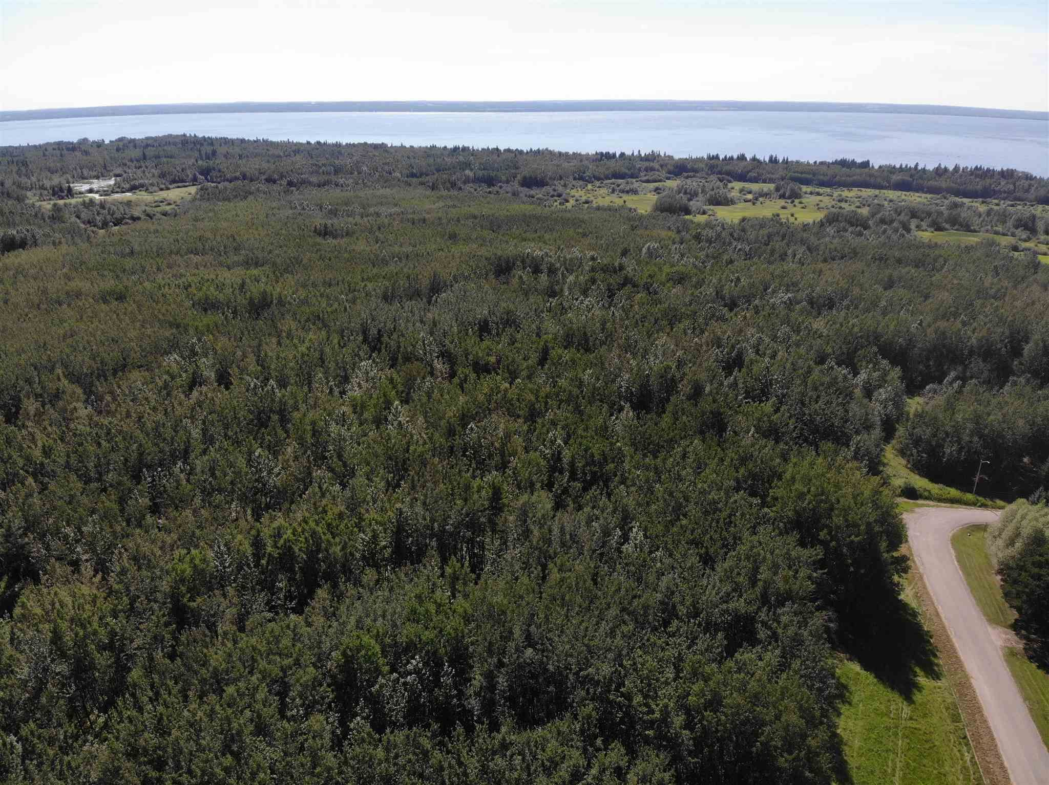 Main Photo: 50 Ave RR 281: Rural Wetaskiwin County Rural Land/Vacant Lot for sale : MLS®# E4191216