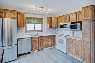 Photo 20: 959 MCKENZIE Drive SE in Calgary: McKenzie Lake House for sale : MLS®# C4183479