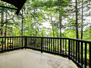 Photo 29: 4616 Cliffwood Pl in : SE Broadmead House for sale (Saanich East)  : MLS®# 875533