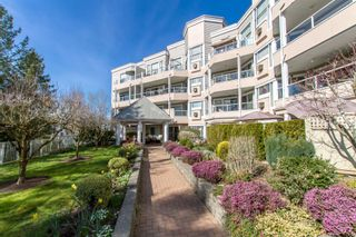 "Photo 1: 217 11605 227 Street in Maple Ridge: East Central Condo for sale in ""THE HILLCREST"" : MLS®# R2382666"